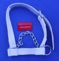 Cow Halter with Chin Chain  white